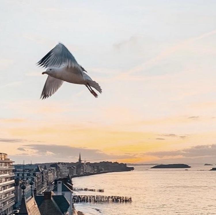 Saint-Malo une ville incontournable