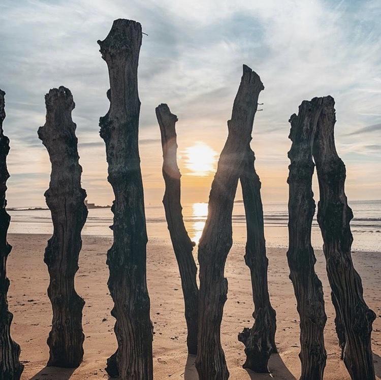 Les brises lames dans le sable sur la plage du sillon à Saint-Malo